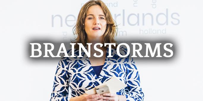 brainstorms logo klein